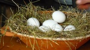 Pflege-Ei für weiche Hände